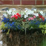 A planter to celebrate the new royal baby