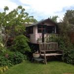 Our garden at home